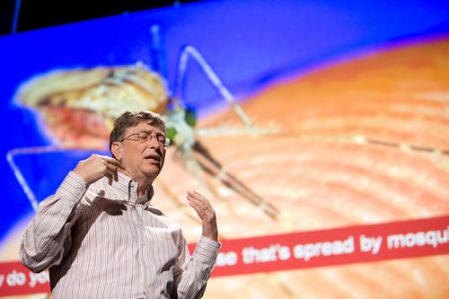 ps_gates_mosquito.jpg