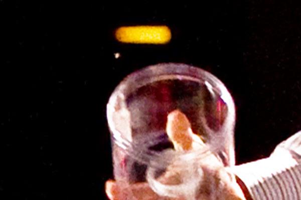 TED2009_Gates_Mosquitos_CloseUp_Closer1.jpg