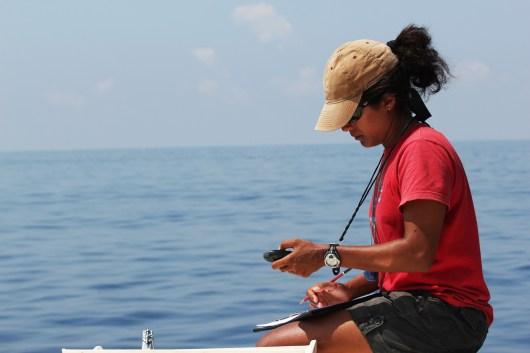 Asha de Vos taking GPS coordinates of a blue whale sighting.