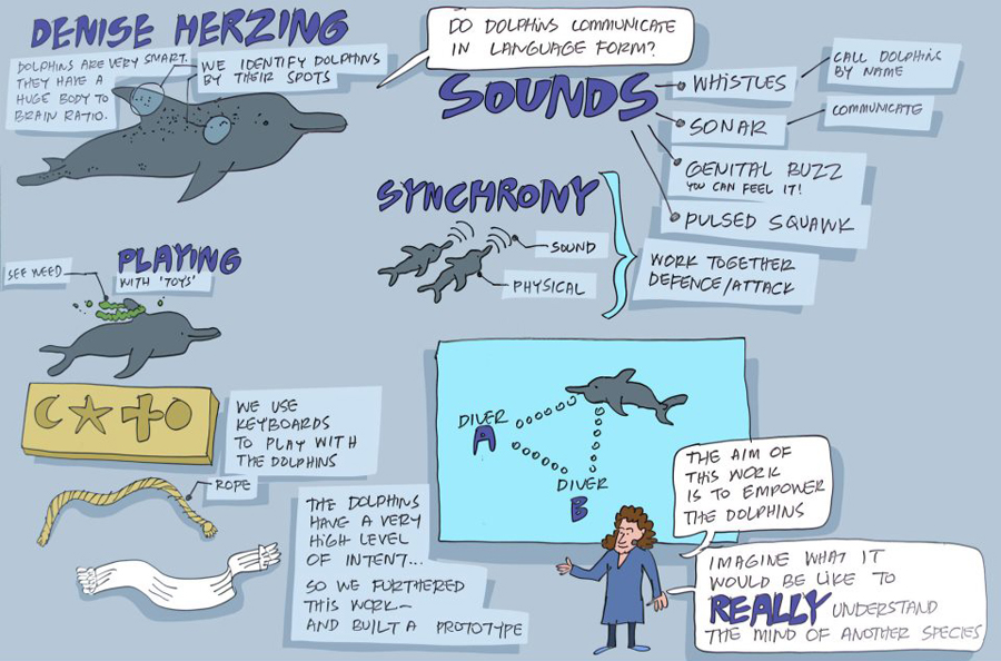 Denise Herzing works on understanding the language of dolphins, with the hopes that we may one day be able to communicate with them.