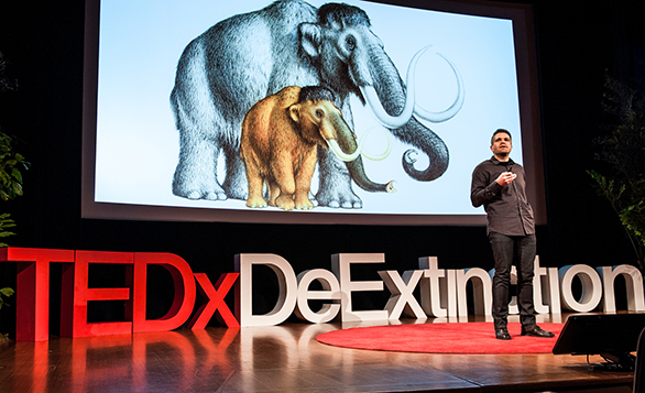 Hendrick Poinar shares how his team is sequencing the woolly mammoth genome. Photo: courtesy of TEDxDeExtinction