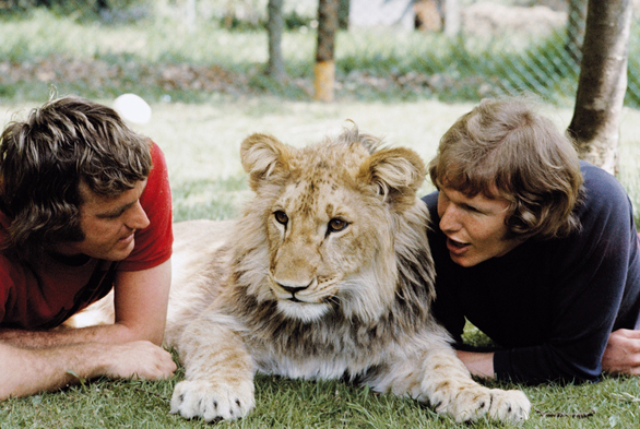 Christian-the-Lion