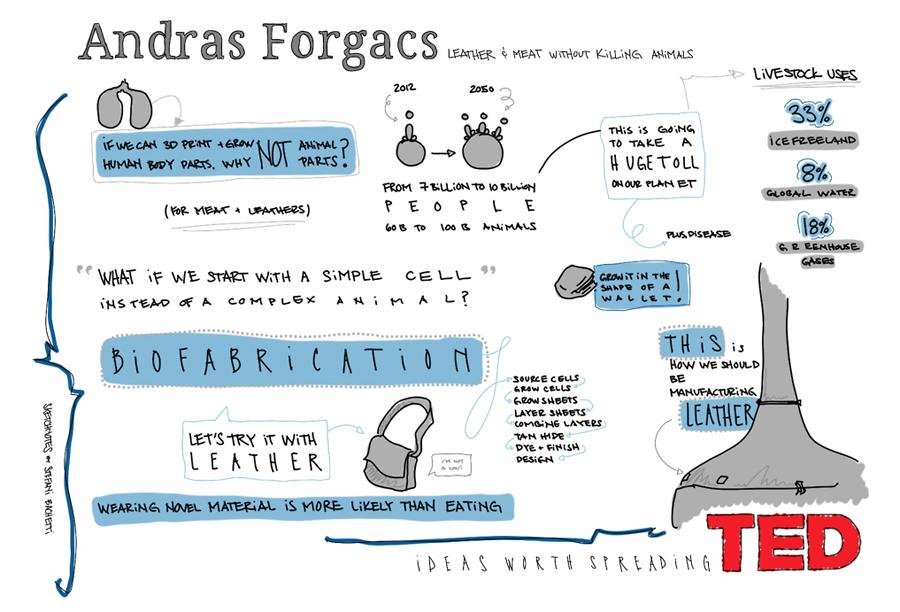 Bachetti-Andras-Forgacs