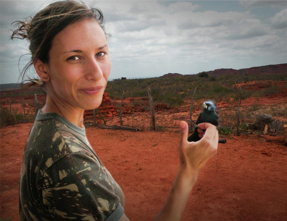 Juliana holding an ultramarine grossbeak, while doing fieldwork in Bahia. Photo: Erica Pacifico