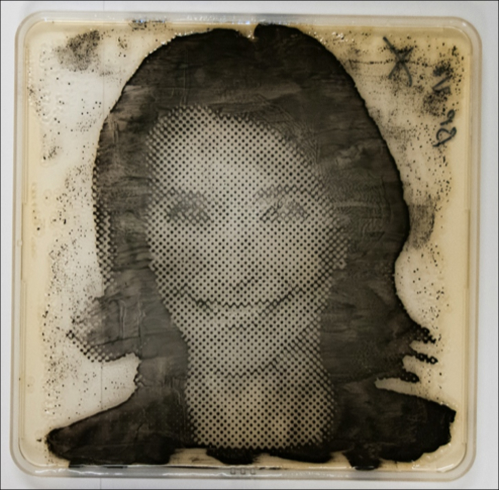 This is a bacteriograph, created of speaker Barbara Natterson-Horowitz by microbial artist Zachary Copfer. The bacteria used? E Coli. Photo: Zachary Copfer