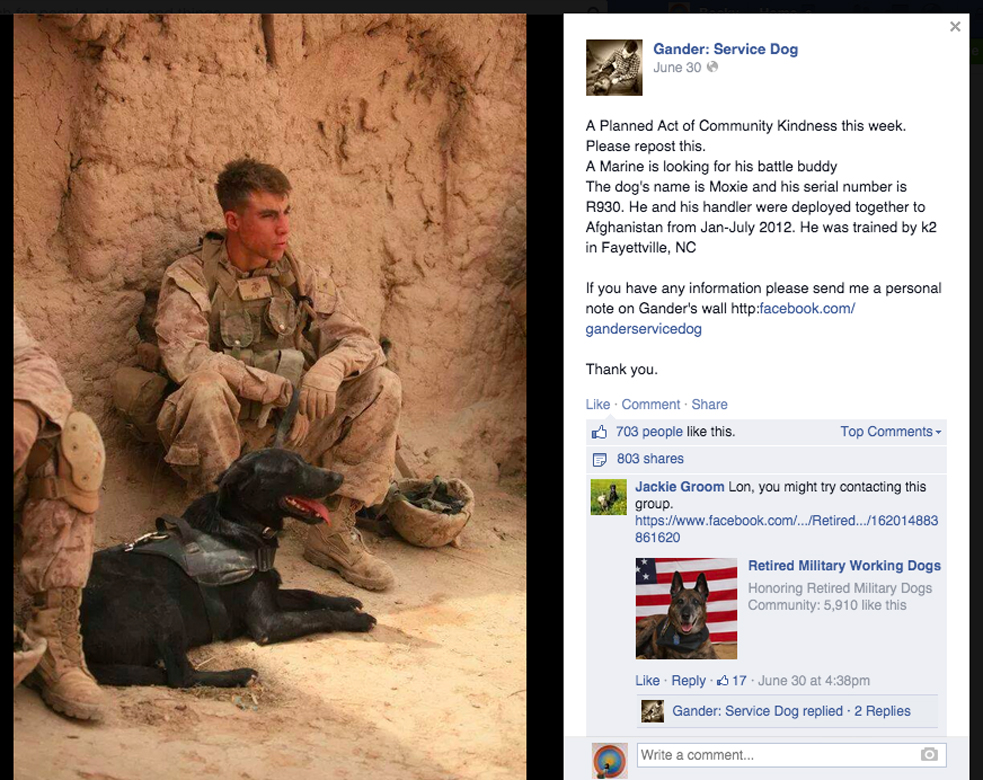 Hodge recently helped TK find his sog, Moxie. Photo: Facebook