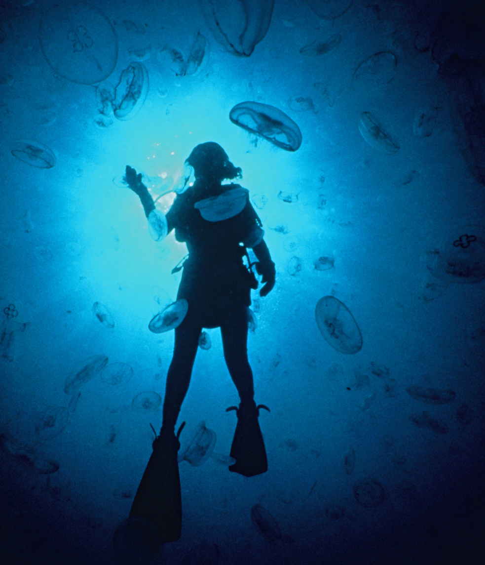 sylvia-earle-with-jellyfish-feature