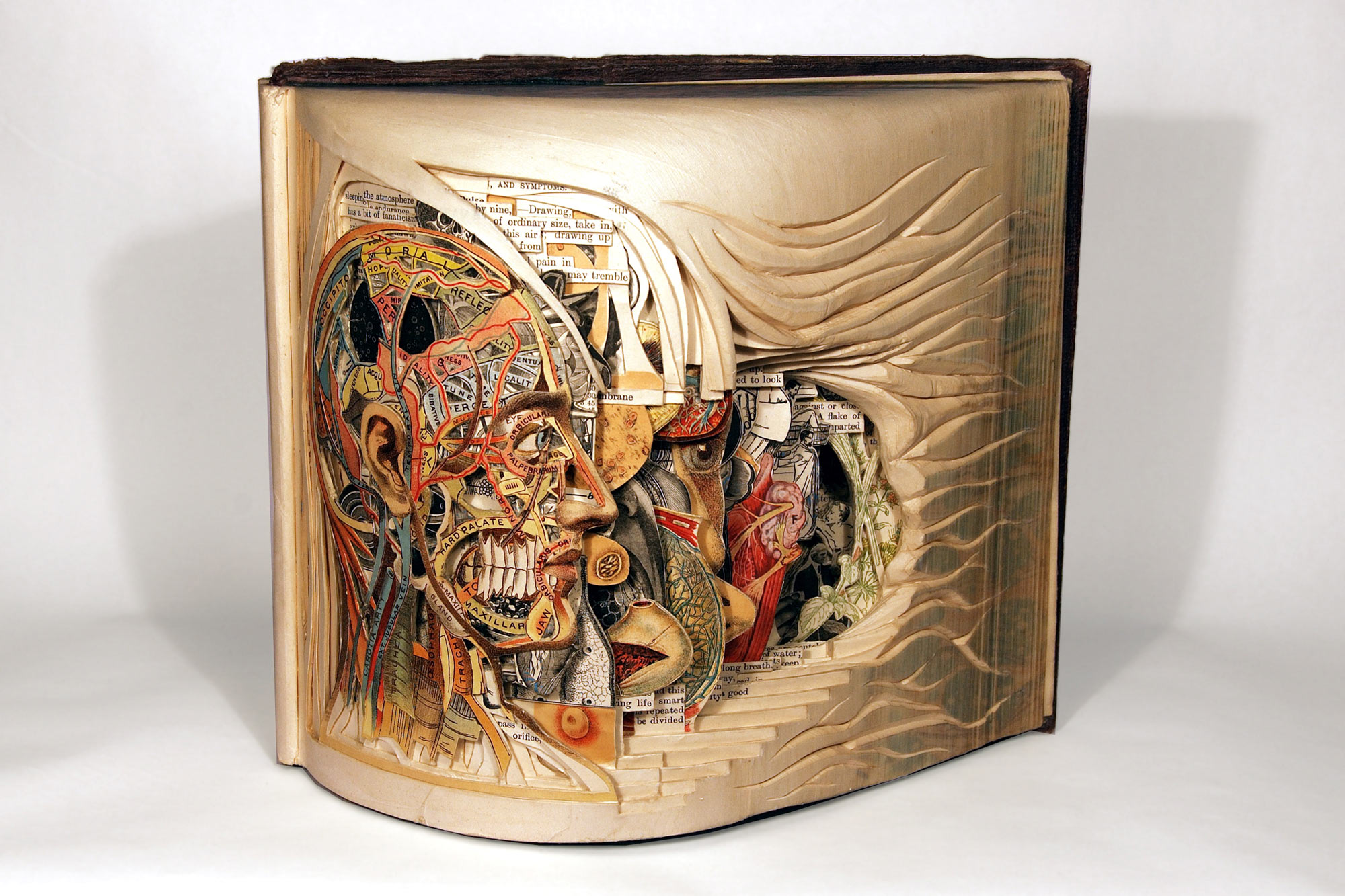 One of Brian Dettmer's book sculptures. Photo: Courtesy of Brian Dettmer