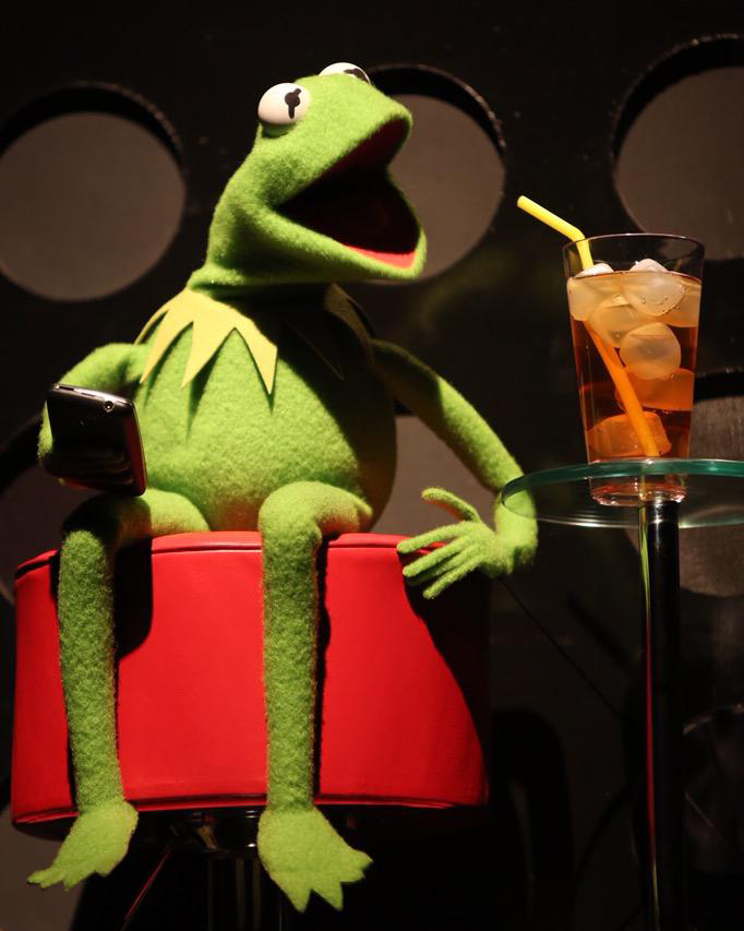 Kermit surprised the audience at TEDxJackson. Photo: Twitter/@kaotate
