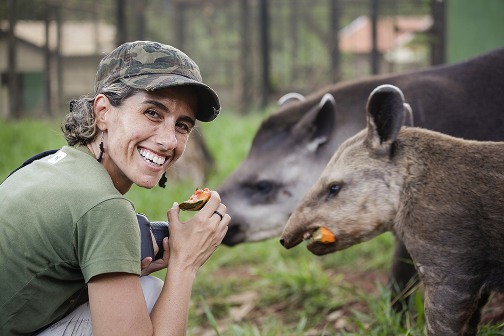 Patricia Medici, a TED Fellow, works with tapirs -- the largest land mammal in South America. Photo: Marina Klink
