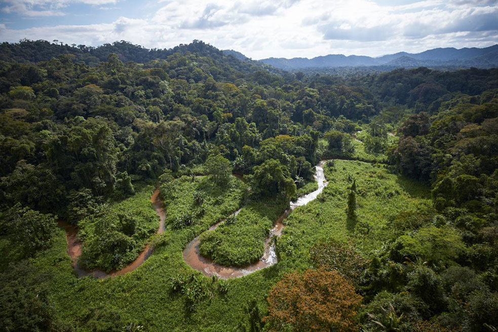 An aerial view of the Río Plátano Biosphere Reserve in Honduras. It's in this ultra remote jungle that explorers found a mythical city. Dave Yoder, courtesy of the National Geographic