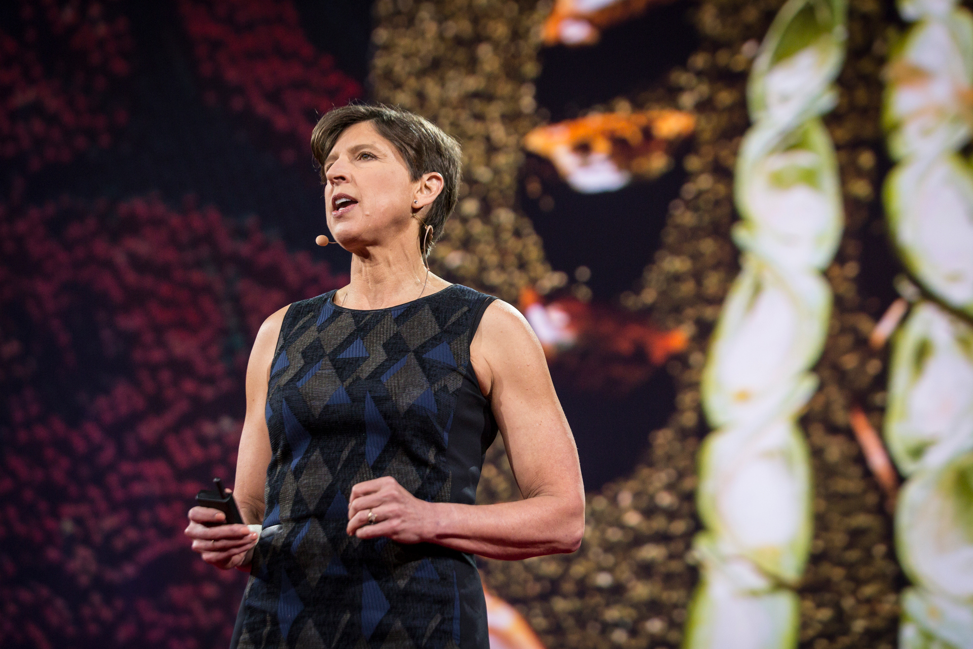 Pamela Ronald speaks at TED2015 - Truth and Dare, Session 6. Photo: Bret Hartman/TED