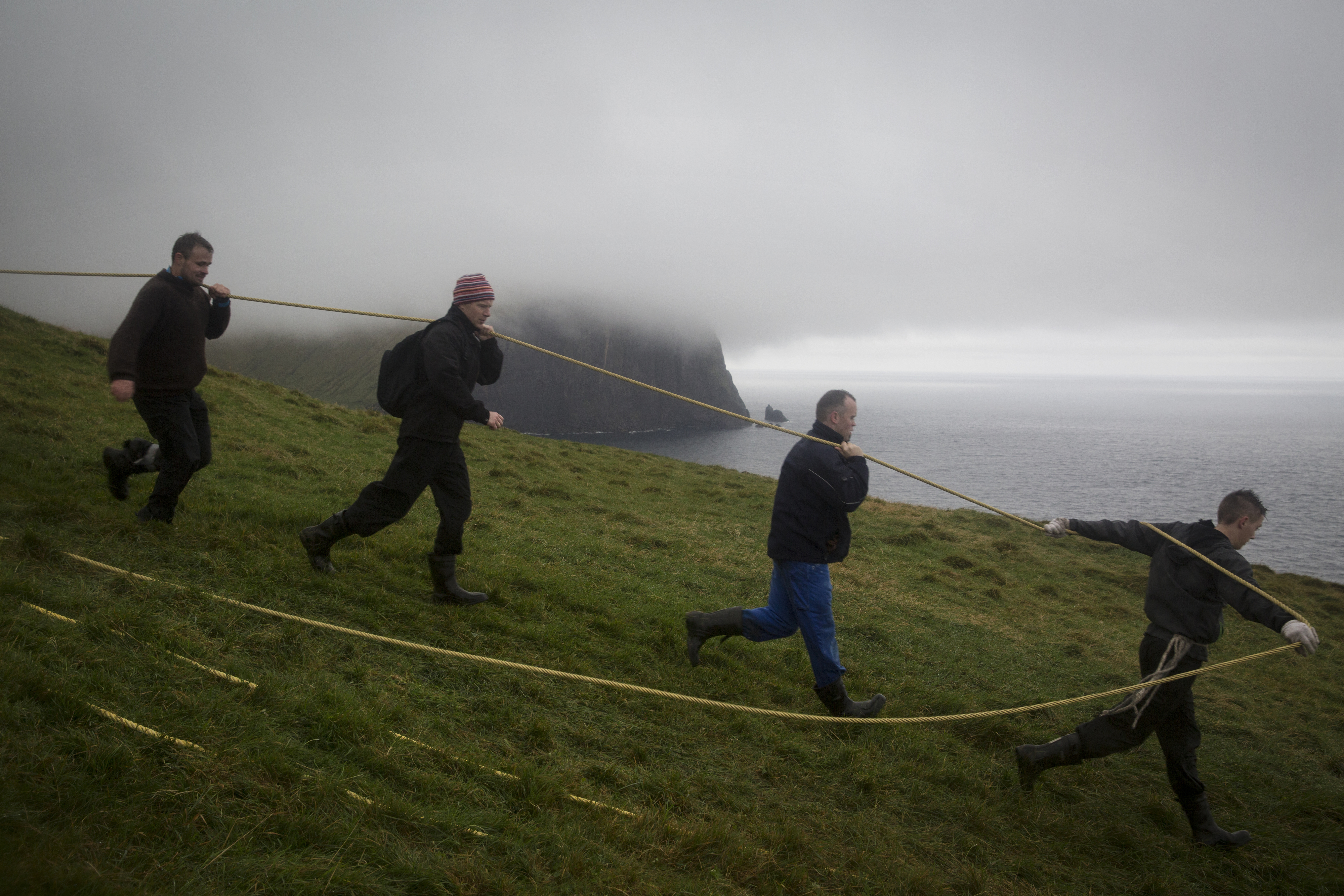 Shepherds use a rope to pull a cart across a cliff in Tjørnuvík, Faroe Islands, on September 20, 2014. At the end of every summer, residents of Tjørnuvík visit a remote island nearby to gather sheep for the annual slaughter.  Photo: Ed Ou. Reportage: Getty Images