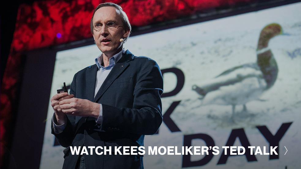 Kees-Moeliker-TED-Talk-CTA