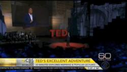 TED's excellent advanture