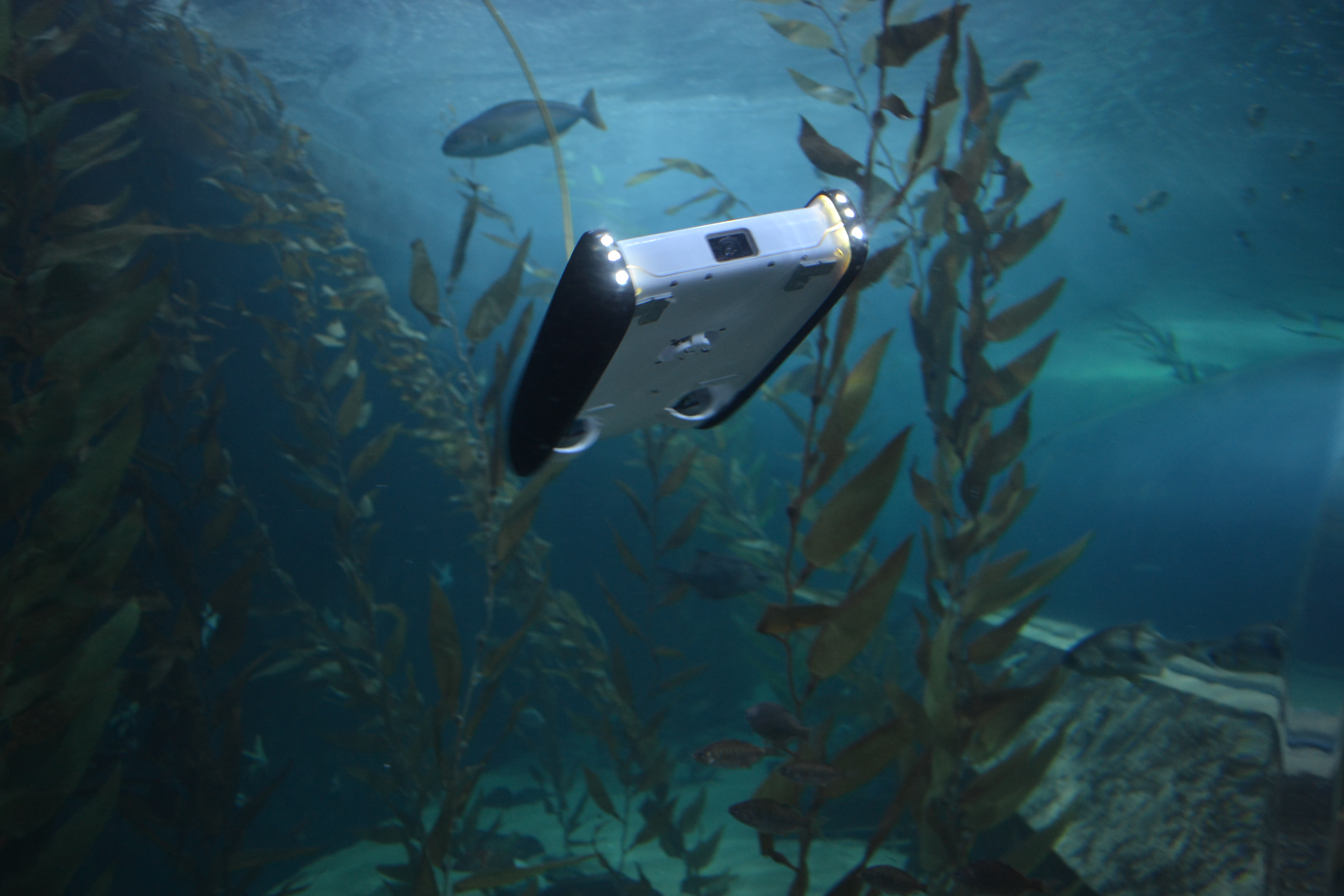 TED Fellow and 2016 National Geographic Emerging Explorer David Lang's OpenROV underwater robot. Photo: Courtesy of David Lang