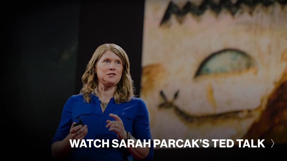 sarah-parcak-prize-cta
