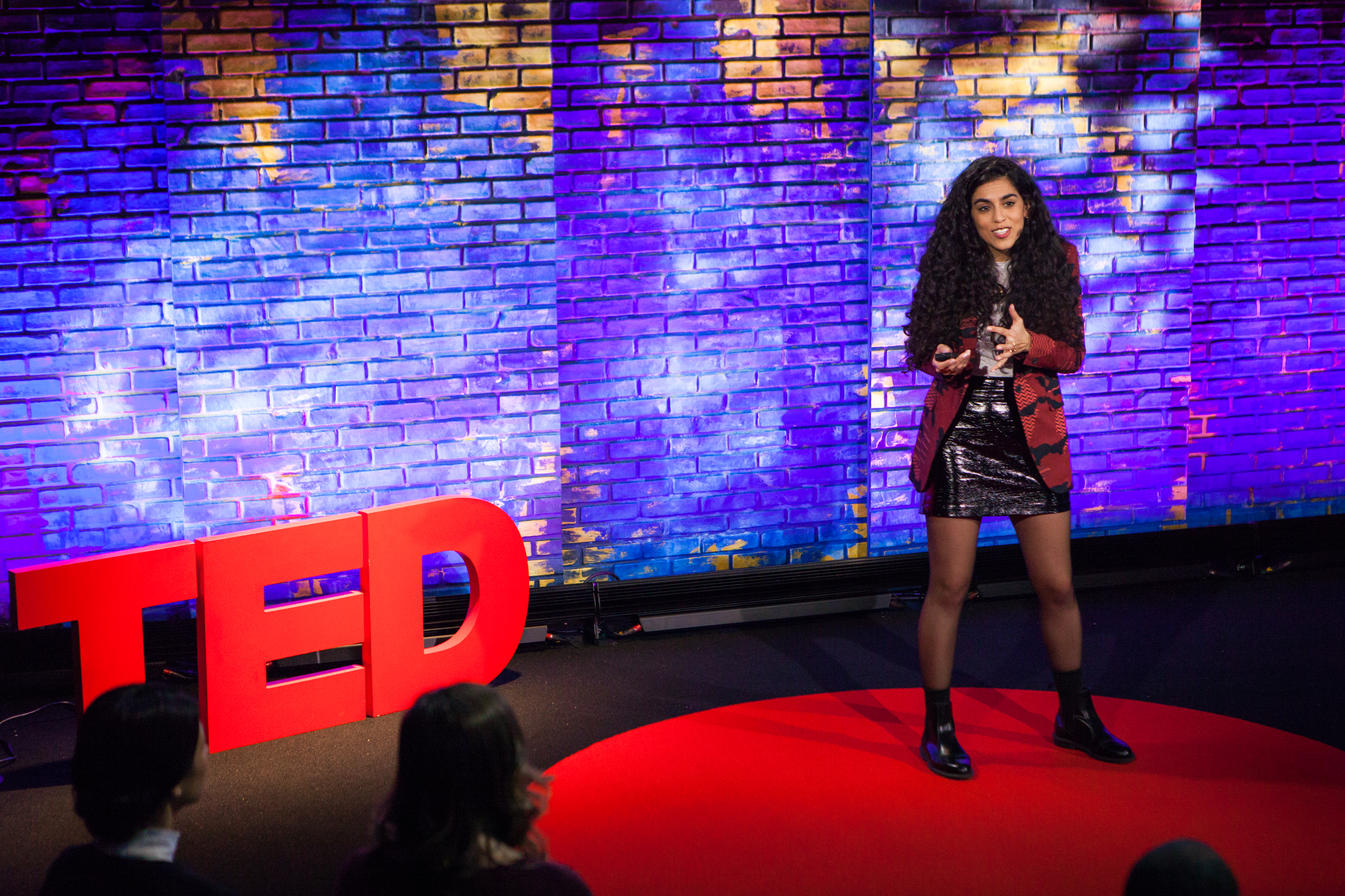 Mona Chalabi speaks at TEDNYC - Rebirth, February 15, 2017, New York, NY. (Photo: Jasmina Tomic / TED)