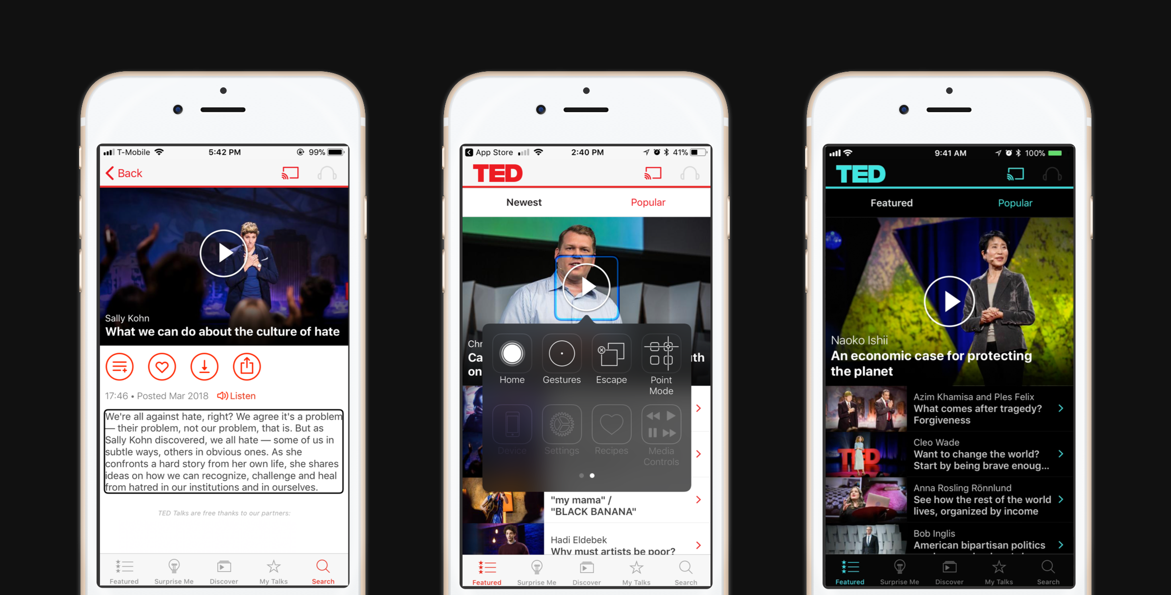 TED app accessibility