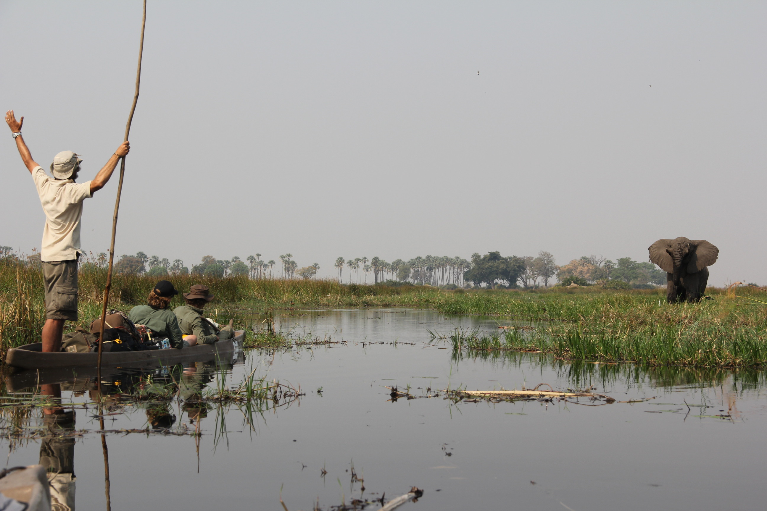 Boyes greeting an elephant while crossing the Okavango Delta. Image courtesy Steve Boyes.