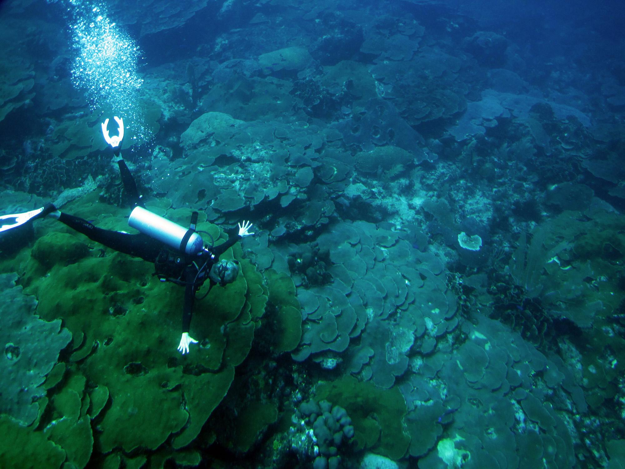 13-Kristen-Marhaver-diving-at-Boka-Patrik-credit-Mark-Vermeij