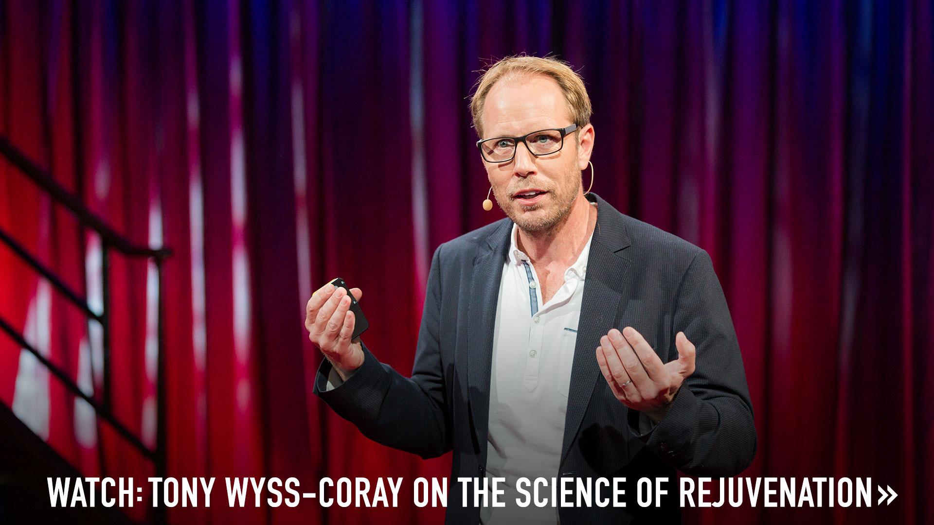 Tony Wyss-Coray_clickable