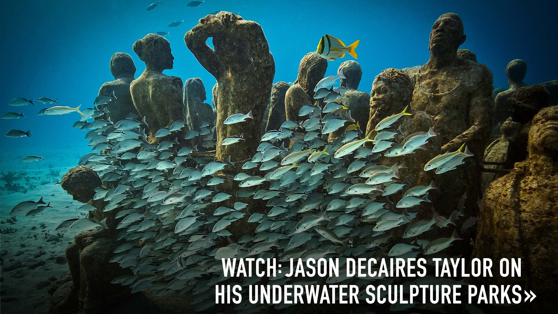 Jason_deCaires_Taylor_linkable_images (1)