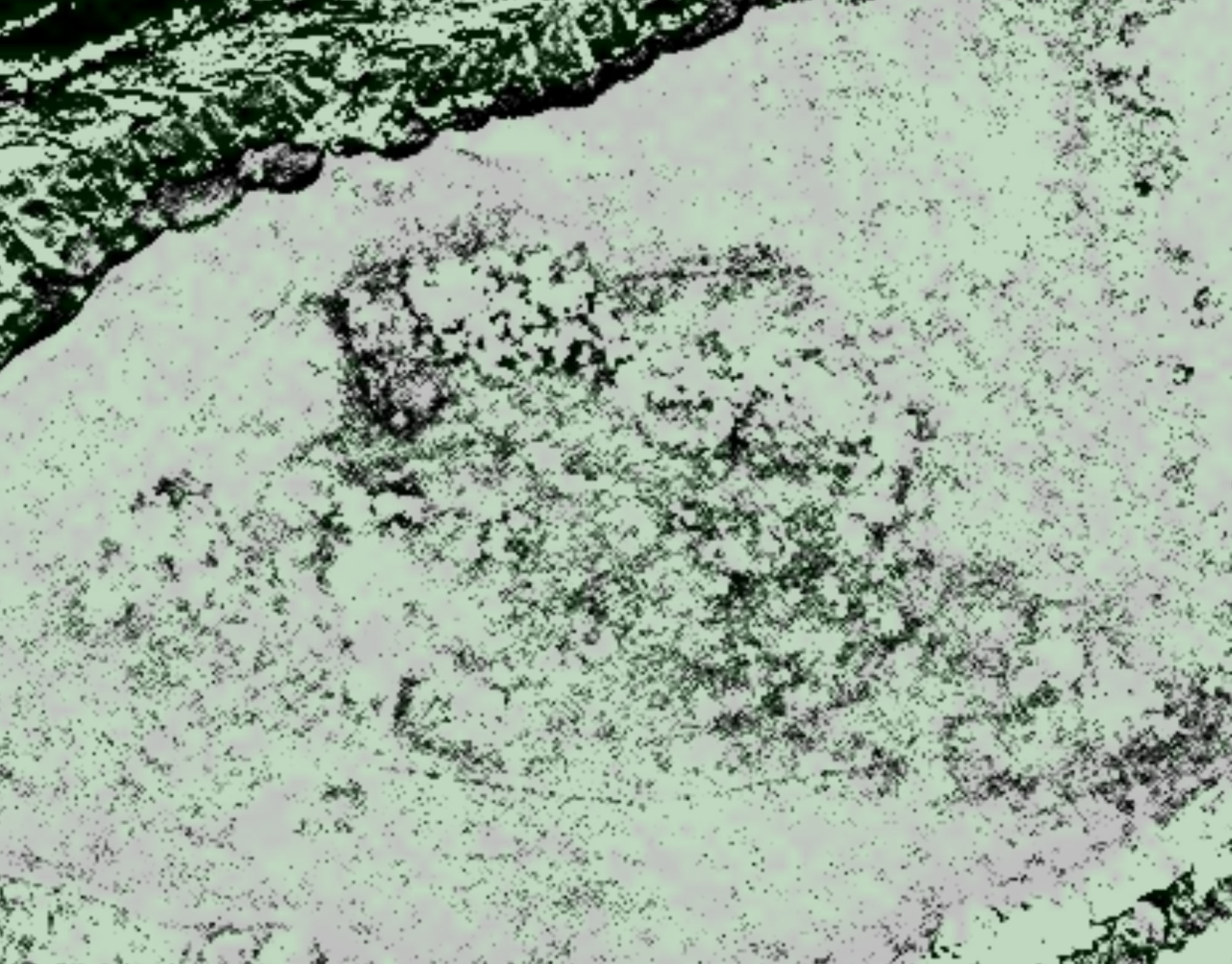 Satellite imagery with .5m resolution showing the anomalies spotted from the imagery analysis. The darker areas indicate potential turf structures, indicated by vegetation health differences. Image courtesy DigitalGlobe